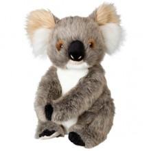 Koala Soft Toy. Real Looking Koala - 30cm